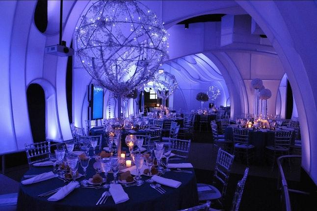 Adler Planetarium Wedding.Adler Planetarium Downtown Chicago Wedding Venues Downtown Chicago