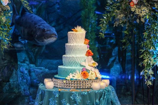 Aquarium Of The Pacific Long Beach California 8