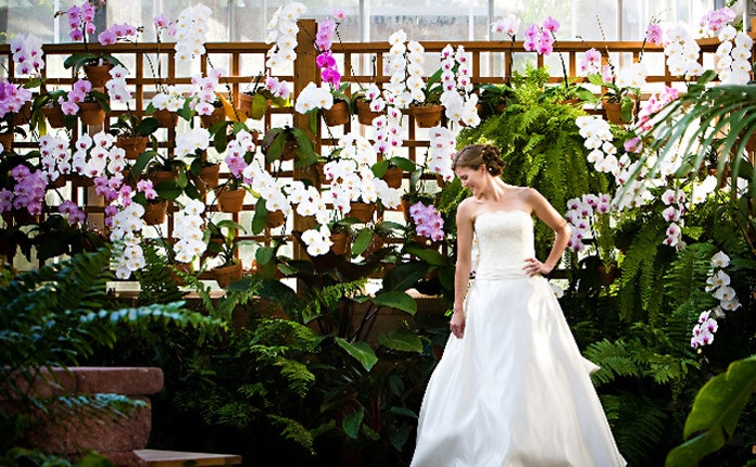 atlanta botanical garden atlanta georgia 7 - Botanical Garden Wedding