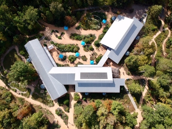 North Carolina Botanical Garden - Chapel Hill, North Carolina #10
