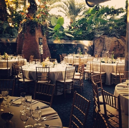 Pittsburgh Zoo And Ppg Aquarium Weddings Pittsburgh Wedding Venue