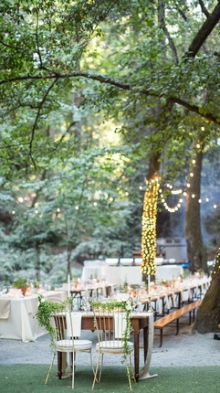 Saratoga Springs Wedding.Wedding Venue With Redwoods Saratoga Springs Saratoga Ca 95070