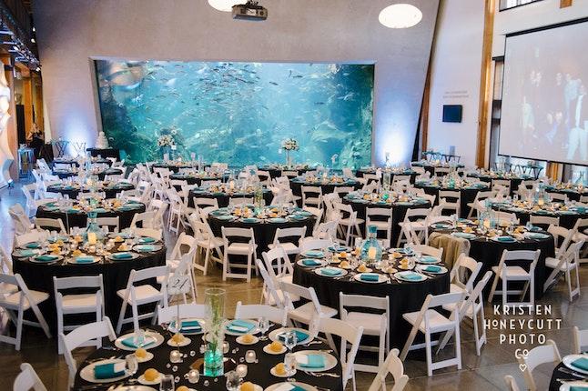 Wedding Venues Seattle.Seattle Aquarium Seattle Weddings Washington Wedding Venues